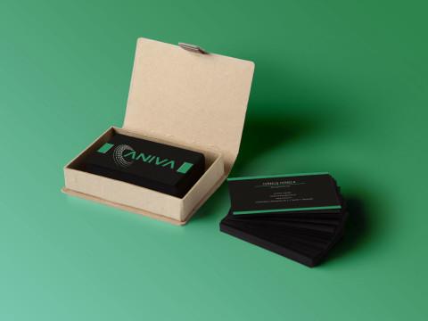 carti de vizita Aniva 2014